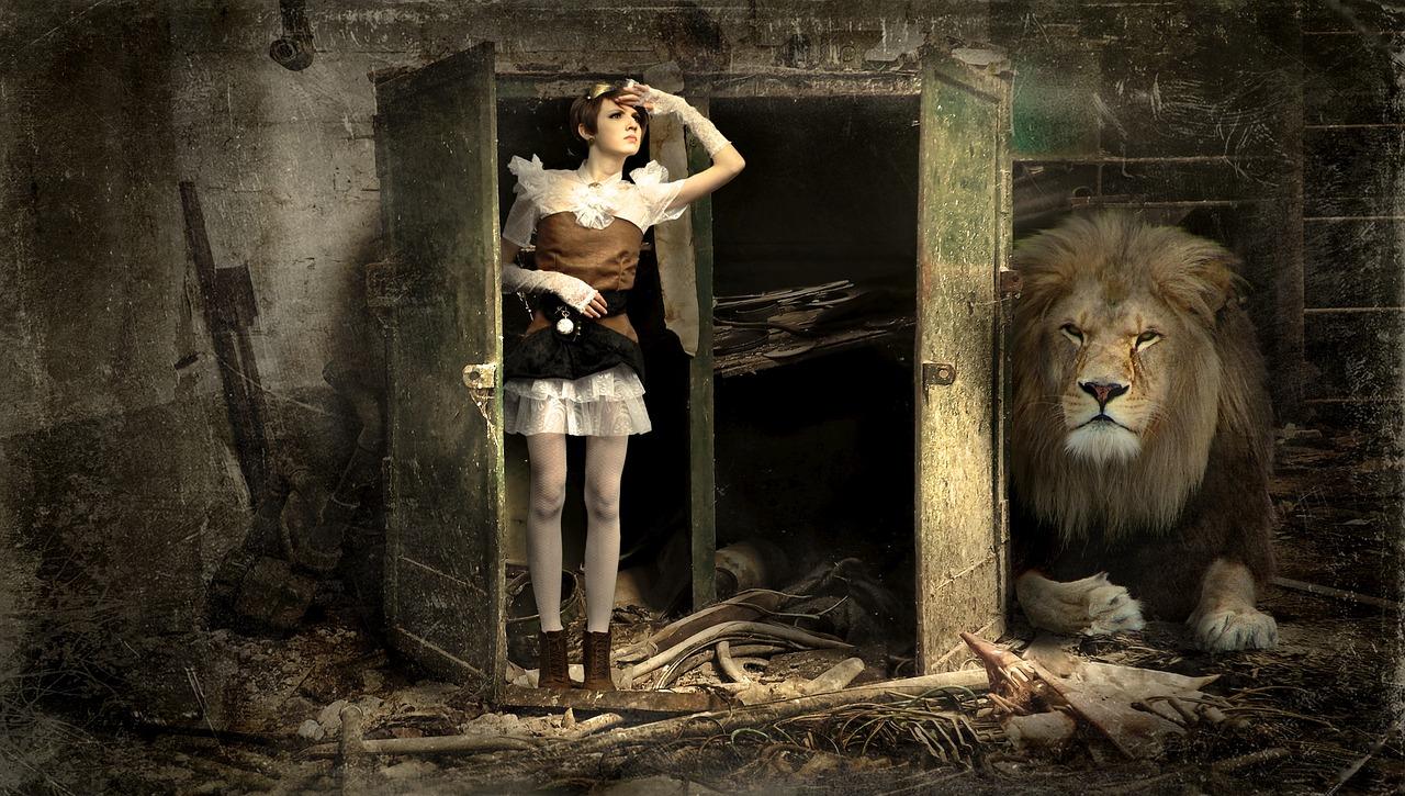 Lev u skříně