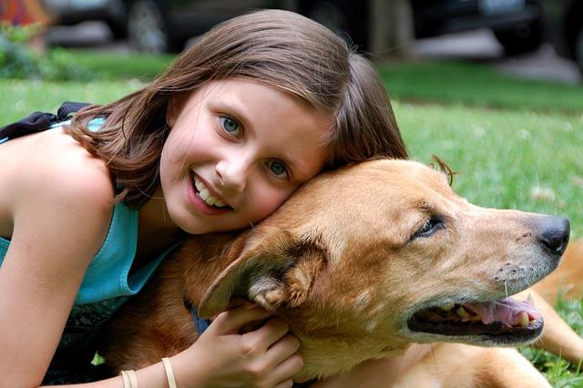 láska k psovi