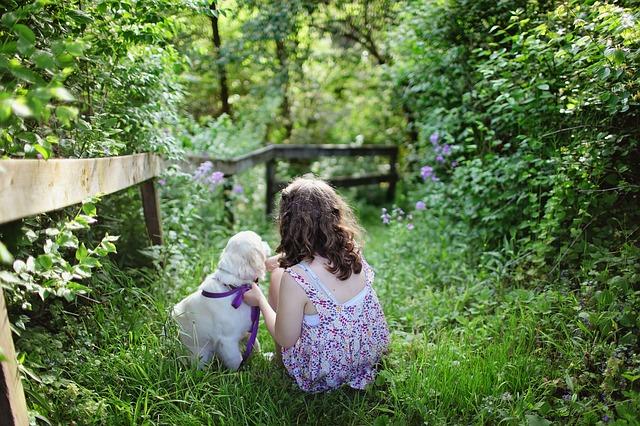 holčička se psem